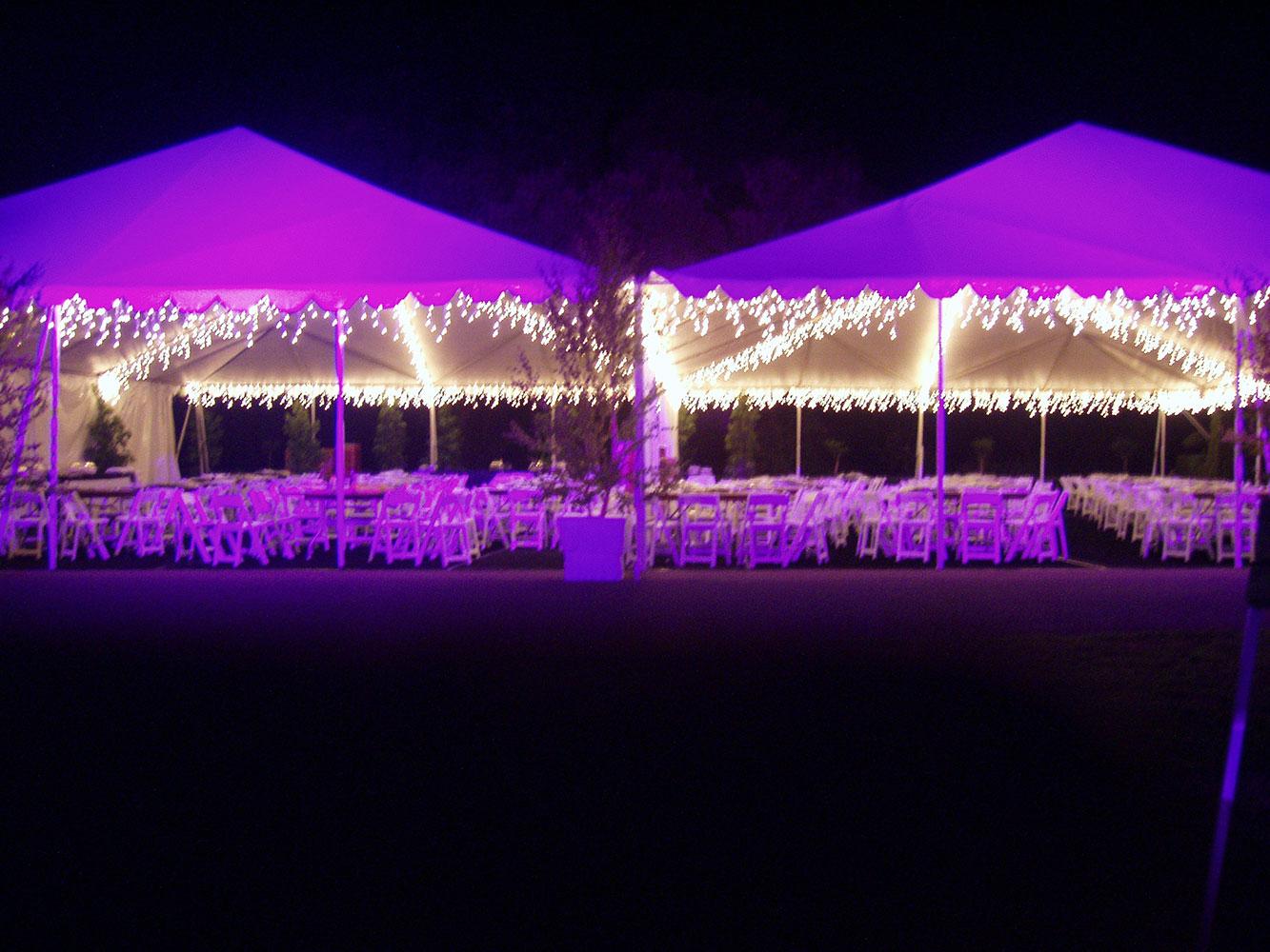 Neverland---Decor-and-Lighting